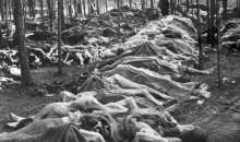 Europejski Nakaz Aresztowania wobec obywatelki Niemiec – byłej nadzorczyni SS (SS Aufseherin) w obozie pracy przymusowej Mittweida będącym filią niemieckiego obozu koncentracyjnego KL Flossenbürg